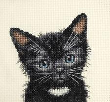 Black cat, kitten, BLANC Bib-COMPLET Counted Cross Stitch Kit + toutes les matières