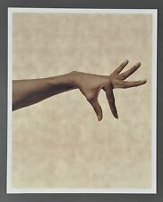 Karl Lagerfeld Limited Edition Photo Print 29x36 Blanca Li 1997 Woman's Hand Art