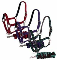 Halter Turquoise Large Horse-year Draft for sale online Weaver Bubbles Patterned Non Adj