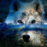 Full Drill 5D Diamond Painting Sunset Wolf Embroidery Cross Stitch Crafts