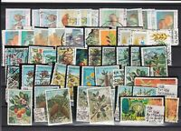 Spain Flora Stamps Ref 23297