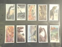 1993 Brooke Bond DINOSAUR TRAIL  BB1 11PG dinosaurs Trading set 20 cards  RARE!