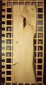 180 Buchenbrett Dekobrett Regalbrett Massiv 36mm x 31-38cm x 120cm