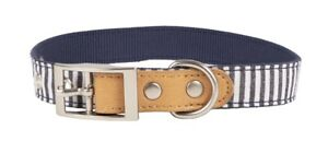 Vibrant Life Patterned Dog Collar Metal Clasp, Blue/White Striped Medium *New*