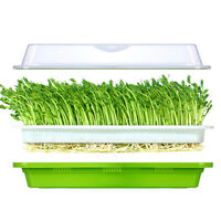1/2/4Pcs Seed Sprouter Tray BPA Free PP Soil-Free Big Capacity Wheatgrass Grow