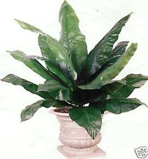"48"" SPATHIPHYLLUM ARTIFICIAL SILK BUSH PLANT DAY LILLY"