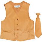 New Boy's Kid's formal Tuxedo Vest Waistcoat  Necktie Gold US size 2-14 wedding