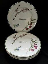 """(6)  Apilco Elysian Garden Dinner Plates 10 3/8"""""""