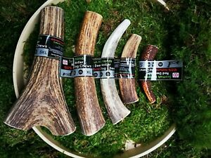 Red Deer Antler Dog Chew - Long Lasting - Full of Minerals 100% Natural Dog Chew