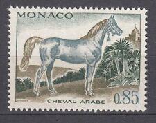 TIMBRE  MONACO NEUF N° 837 *  CHEVEAUX DE SANG CHEVAL ARABE