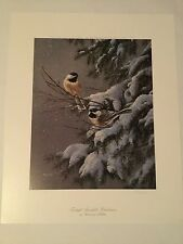 chickadee's print by artist Rosemary Millette