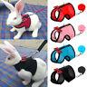Soft Mesh Pet Dog Harness and Lead Puppy Cat Rabbit Squirrel Walking Vest Leash