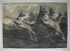F. PILOTY ´ZWEI JUNGE LÖWEN MIT REHBOCK; LIONS´ NACH F. SNYDERS, W. 622/25; 1816