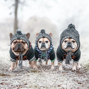 2021 winter pet dog hat French bulldog outdoor dog warm and windproof  CF
