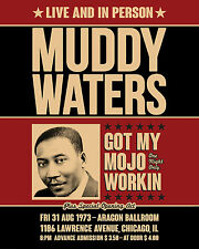 """Muddy Waters Concert Poster - 8""""x10"""" Color Photo"""