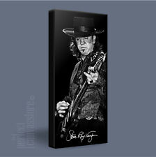 STEVIE RAY VAUGHAN LEGENDARY GUITAR ICON CANVAS ART PRINT PICTURE Art Williams