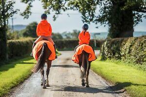 Orange Hi Viz Vis Fleece Exercise Sheet Reflective Safety High Visibility New