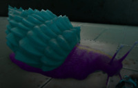 ark survival evolved XBOX PVE Cotton Candy Snail CLONE