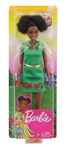 Barbie Dreamhouse Adventures - Nikki. Brand New Boxed Doll, NRFB.