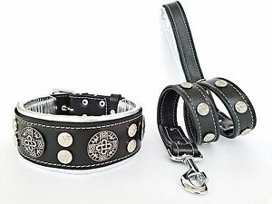 Handmade collar & leash. studded. soft padded large breeds. Made in Europe.