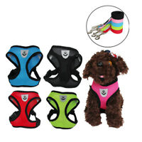 Pet Cat Walking Harness and Lead Adjustable Strap Vest for Small Dog