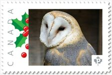 BARN OWL = BIRD OF PREY = Picture Postage Canada 2019 [p19-04s18] MNH VF