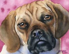 Puggle 8 x 10 Dog Watercolor Art Print Signed by Artist Djr