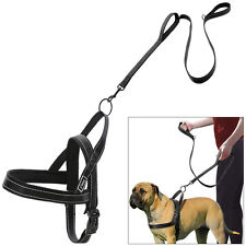 Reflective No Pull Nylon Dog Harness and Traffic Leash Quick Fit for Dogs M L