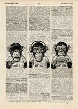 3 Wise Monkeys, See, Hear Speak No Evil Dictionary Art Print Set Animals Clothes