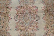 Antique Muted Floral Taupe Kirman Area Rug Traditional Distressed Carpet 3'x5'