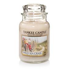 Yankee Candle Large Jar - Wild Sea Grass Retired HTF