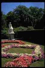 346029 statue et plates-bandes le Elms USA A4 papier photo