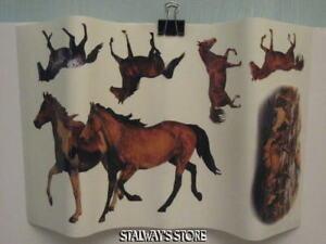 Realistic Horse Appliques 20 Piece RoomMates NIP