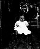 Antique 4x5 Glass Plate Negative Portrait of a Young Child in a Garden (V4417)