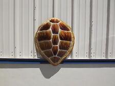 "32"" Hawksbill Turtle Shell Half Mount Fish Replica"