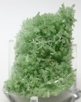 "1.6"" TOP FINE GYPSUM VAR. GREEN SELENITE FROM MT. GUNSON, AUSTRALIA (6053)"
