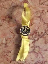 Beta Sigma Phi Pin Yellow AKRON 95 BEO 5 1/2 in Fraternity & Sorority Memora