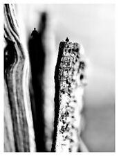 Astrid Ufkens Fotografie Titel: Syeady By ARTFORYOU
