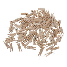 100x Natural Wooden Mini Craft Pegs Cloth Pin Photo Hanging Spring Clip 25mm
