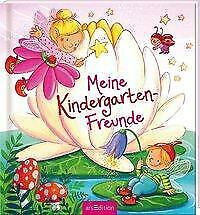 Meine Kindergarten-Freunde (Feen) (Gebundene Ausgabe)