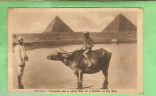EGYPT  MILITARY POSTCARD -  1919, ON ACTIVE SERVICE,PYRAMIDES & BUFFALO