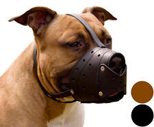 PitBull Leather Dog Muzzle AmStaff Staffordshire Terrier Secure Basket