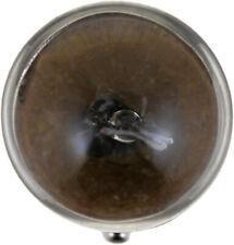 Turn Signal Light R10WB2 Philips