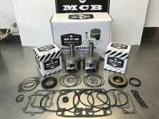 2001 2002  ARCTIC CAT ZR 600 EFI - ALL TOP END PISTON KIT with full gasket