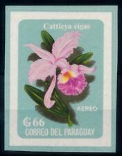 [66217] Paraguay 1963 Flora Flower Blume Airmail NO GUM Imperf.