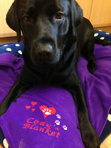 Personalised Embroidered Dog / Puppy Fleece Pet Blanket Hearts & Paws gift
