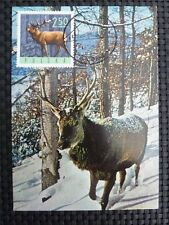 POLEN MK FAUNA WILD HIRSCH DEER MAXIMUMKARTE CARTE MAXIMUM CARD MC CM c938