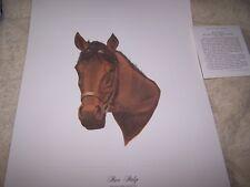 RIVA RIDGE  Kentucky Derby Winner 1972 ~Collection of L C Gosney 16 * 12 Print