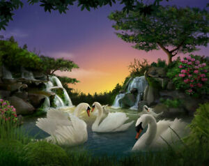 Paint By Numbers Kit Canvas 50*40cm 8158 Swans in Xmas AU Shipping