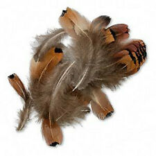 "Feathers Pheasant Jewelry & Hair Extension 2-4"" Natural about 25"